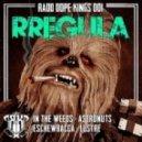 Rregula - Eschewbacca (Original Mix)