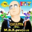 Caiaffa Feat Mbz Project  - Fly (Bross.. Laurer Remix)