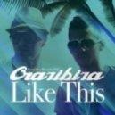 Crazibiza - Like This (Original Mix)