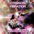 Cosmos Vibration - Electromagnetismo (Original Mix)