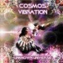 Cosmos Vibration - Tolteca Mushrooms (Original Mix)