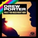 Drew Porter - What You Need Right Now (Bassmonkeys Radio Edit)