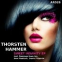 Thorsten Hammer - Sweet Insanity (ICS Remix)