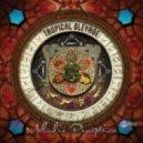Tropical Bleyage - One Life (Original Mix)