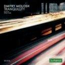 Dmitry Molosh - Tranquility (Original Mix)