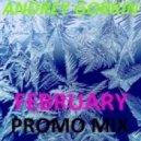 Dj Andrey Gorkin - February Promo Mix 2014