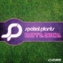 Spatial Plants - Ananda (Original mix)