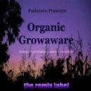 Cristian Paduraru - Poorin Spirit (Organic Deephouse Mix)
