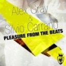 Alex Gray & Silvio Carrano - Pleasure From The Beats (Alex Gray Back To 90s Radio Mix)