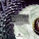 Tantrum Desire - Adventure Through Space  (Original mix)