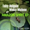 Toby Holguin, Nicky Malone - Now Is The Time (Original Mix)