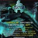 DJ Alpha - Big Skank (Original mix)