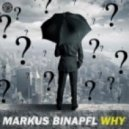 Markus Binapfl - Why (Original mix)