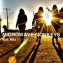 Nita, Microwave Monkeys - Sun Is Shining (Original Mix)