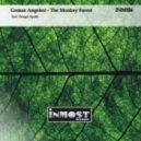 German Angeleri - The Monkey Forest (Sergei Spatz)