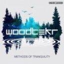 Woodtekr - Floating Feathers (Original mix)