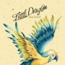 Little Dragon - Ritual Union (Something That Remix)