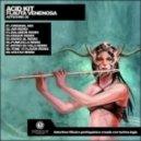 Acid Kit - Flauta Venenosa (Voltaxx Remix)