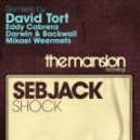 Sebjack - Shock (David Tort Remix)