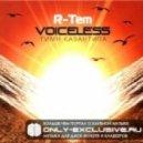 R-Tem - R-Tem - Voiceless (Dave Shtorn Remix)