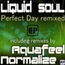 Liquid Soul - Perfect Day (Normalize Remix)