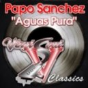 Papo Sanchez - Aguas Pura (Sir Piers & Ed Funks  Curious Beats)
