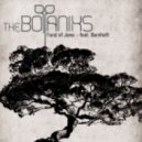 The Botaniks ft. Bernhoft - Fond of Jane
