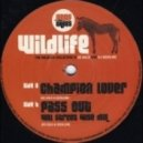 The Wildlife Collective - Champion Lover