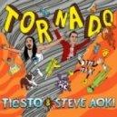 Tiesto, Steve Aoki - Tornado (Original Mix)