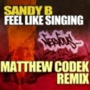 Sandy B - Feel Like Singin\' (Original Mix)