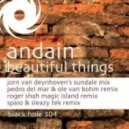 Andain - Beautiful things (Sound Access Remix)