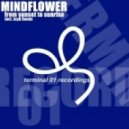 Mindflower -  From Sunset to Sunrise (JayB Remix)