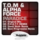 T.O.M. & Alpha Force - Paradice (Sovt progressive remix)