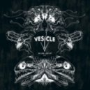 Vesicle - We Are Lost