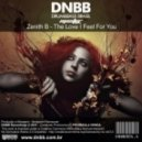 Zenith B - The Love I Feel For You