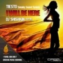 Tiesto - I Will Be Here (DJ Shishkin Remix)