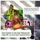 Darin Epsilon & Tom Sela - Metamorph (Original Mix)