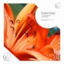 Eelke Kleijn - Levensgenieter (Original Mix)