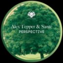Sante and Alex Tepper - Put Your (Original Mix)