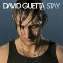 David Guetta - Stay (Dj nErU Remix)