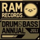 Various Artists -  Drum & Bass Annual 2011 (Continuous DJ Mix)