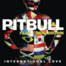 Pitbull ft. Chris Brown  - International Love (Clinton Sparks & The Disco Fries Remix)