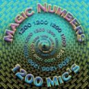 1200 Micrograms - Numberstruck