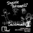 Daniele Petronelli - Salamandra Part II (Karl Kyrill Remix)