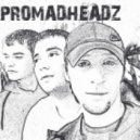 promadheadz - лететь 2011(radio mix)