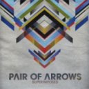 Pair Of Arrows - Superimposed