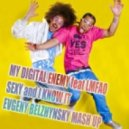 My Digital Enemy feat . LMFAO - Sexy and I Know It (Evgeny Belzhynsky Mash Up)
