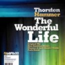Thorsten Hammer - The Wonderful Life (Alex Sandrino Remix)