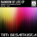 Tim Besamusca  - Rainbow Of Life (feat. Phil Saatchi - Original Mix)