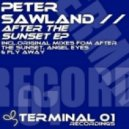 Peter Sawland - Fly Away (Original Mix)